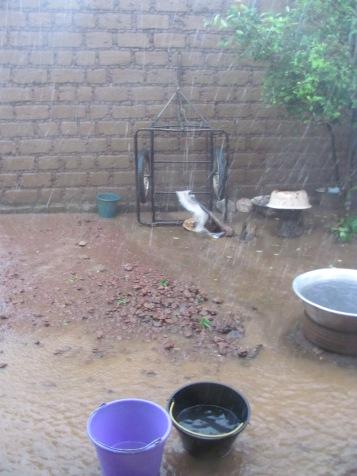 Daily flood during rainy season 2016