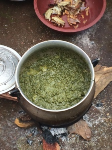Stewed leaves with fish demonstration, August 2016